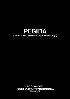 sidebanner_pegida_reader