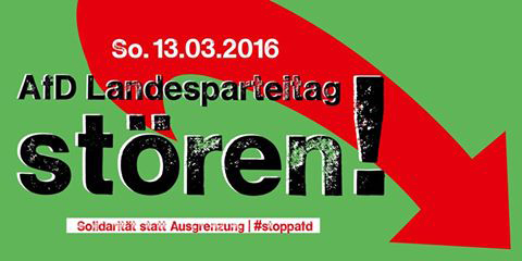 afd_parteitag_hsh_banner_480x240