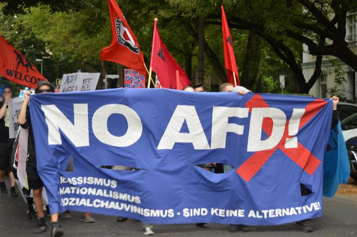 Anti Afd Demo